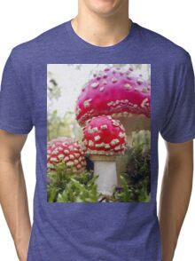 Toadstool Treat Tri-blend T-Shirt