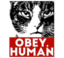 OBEY, HUMAN Photographic Print