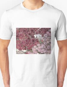 Stonecrop on a Granite Boulder T-Shirt