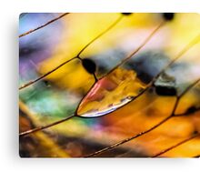 Plain Stain in a Natural Pane Canvas Print