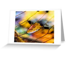 Plain Stain in a Natural Pane Greeting Card
