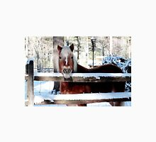 Horse on a pretty winter day Unisex T-Shirt