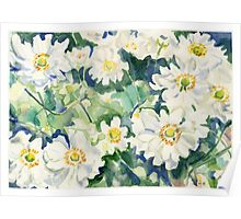 White Flowers watercolor Poster