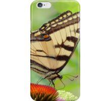 July Swallowtail - Butterfly iPhone Case/Skin