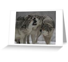 Family Squabble  Greeting Card