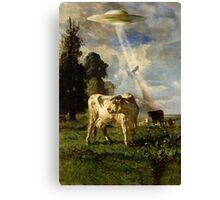 Cow Kidnapping Canvas Print