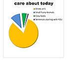 Things I Care About Today Piechart by Tania Rose