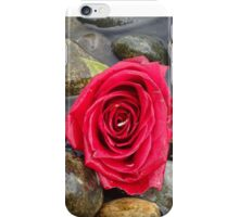 Red Rose at the Rocky Beach iPhone Case/Skin