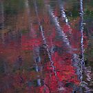 Ripples on fall by MarianBendeth
