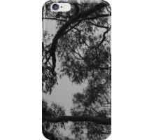 Montana de Oro branches iPhone Case/Skin