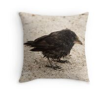 Cactus finch Throw Pillow