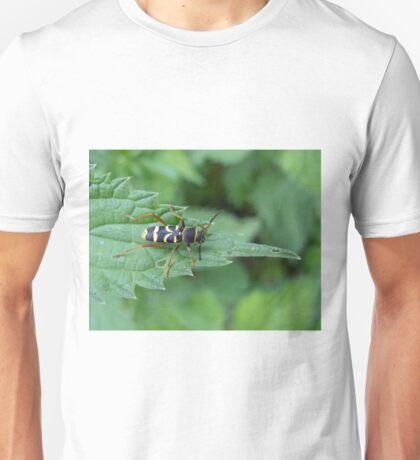 Wasp Beetle Unisex T-Shirt