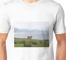 Sheep and the Sound of Sleat Unisex T-Shirt