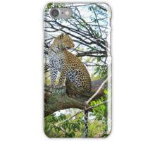 Kopje Leopard 1 iPhone Case/Skin