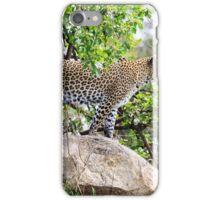 Kopje Leopard 2 iPhone Case/Skin