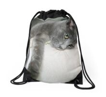 Russian Grey Cross Tabby Cat Drawstring Bag