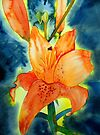 Orange Lillies by Deborah Pass