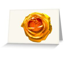Peach Orange Rose Greeting Card
