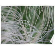 Abstract Image of Tropical Green Palm Leaves Poster