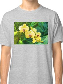 Tropical Impressions - Golden Yellow Orchids Classic T-Shirt