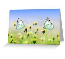 Butterflies Spring Nature Scenery Greeting Card