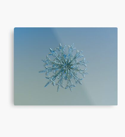 Twelve months, real snowflake macro photo Metal Print