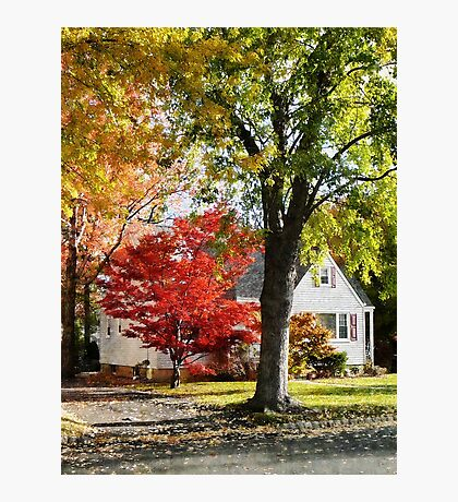 Autumn Street With Red Tree Photographic Print