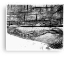Black and white Pencil Sketch of an Alligator  Canvas Print