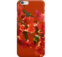 colors - colores  iPhone Case/Skin
