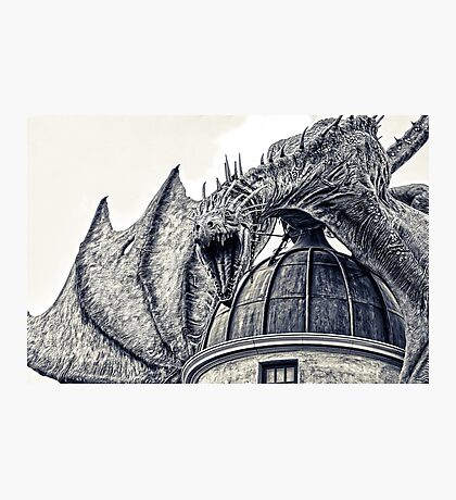 Hungarian Horntail Dragon Photographic Print