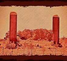 """""""Cousin Cooter's Country Version of  J. R. R. Tolkien's, 'The Lords of the Ring: The Two Towers'""""... prints and products by © Bob Hall"""
