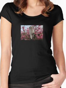 Cat and cherry blossoms Women's Fitted Scoop T-Shirt