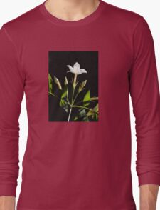 Close Up Of Jasminum Officinale Isolated On Black Long Sleeve T-Shirt