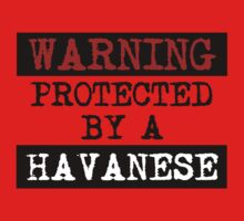 Warning Protected By A Havanese Kids Clothes