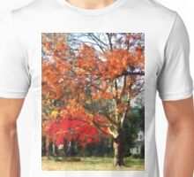 Autumn Sycamore Tree Unisex T-Shirt