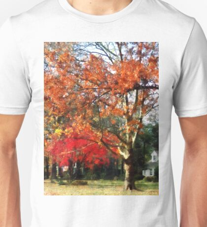 Autumn Sycamore Tree Unisex T-Shirt