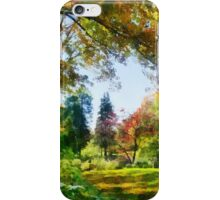 Autumn Vista iPhone Case/Skin