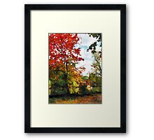 Distant Mill  in Autumn Framed Print