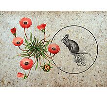 Vintage Illustrations - Mouse with Flowers Photographic Print