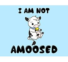 Not 'Amoosed' Cow Pun Photographic Print