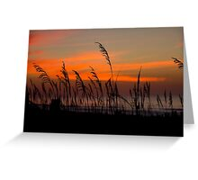 Blustery Beach Greeting Card