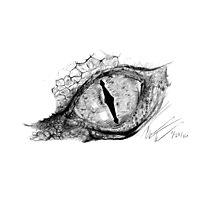 The Eye of Smaug Photographic Print