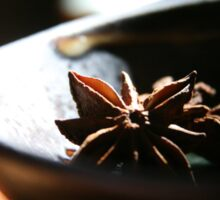 Star Anise  Sticker