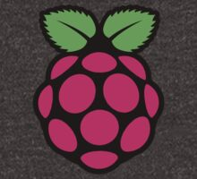 Raspberry Pi by fonz-dm