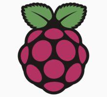 Raspberry Pi One Piece - Short Sleeve