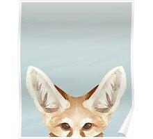 Curious Fennec Poster