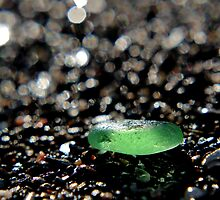 Green Sea Glass by Kathleen Daley