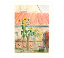 small cottage garden with sunflowers Art Print
