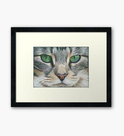 Emerald Eyes Scratch Art Framed Print