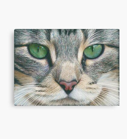 Emerald Eyes Scratch Art Canvas Print